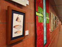 The Art of Science Exhibit at the Columbia Public Library